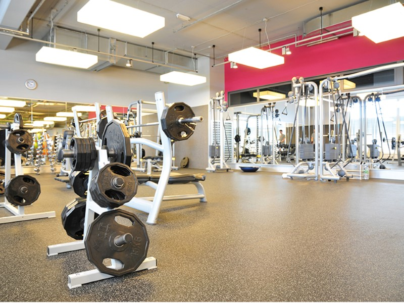 noise and vibration in gyms regupol australia. Black Bedroom Furniture Sets. Home Design Ideas